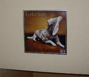 My-Album-Cover